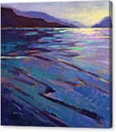 Where The Whales Play 3 Canvas Print