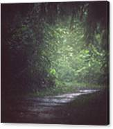Wherever The Path May Lead Canvas Print