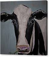 Whimisical Holstein Cow Original Painting On Canvas Canvas Print