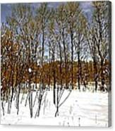Whimsical Winter Canvas Print