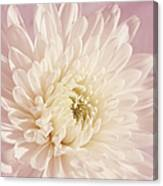 Whispering White Floral Canvas Print