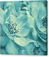 Whispers Of Teal Roses Canvas Print