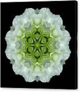 White And Green Begonia Flower Mandala Canvas Print