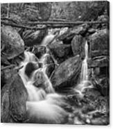 White And Rocky Bw Canvas Print