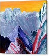 White Canyon Canvas Print