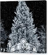 White Christmas In Texas Canvas Print