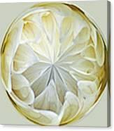White Dahlia Orb Canvas Print