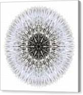 Dandelion Head I Flower Mandala White Canvas Print
