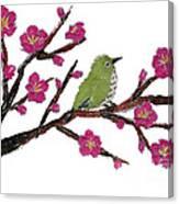 White Eye And Japanese Plum Tree Canvas Print
