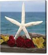 White Finger Starfish And Flowers Canvas Print