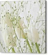 White Flowers Pi Canvas Print
