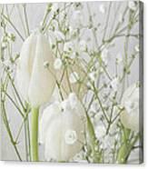 White Flowers Pii Canvas Print