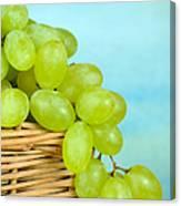 White Grapes Canvas Print