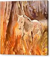 White Horse In The Camargue 01 Canvas Print
