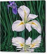 White Iris Canvas Print