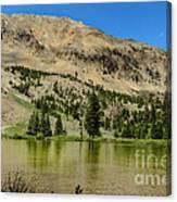 White Knob Mountain Lake Canvas Print