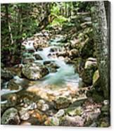 White Mountains Stream Canvas Print