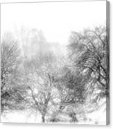 White Out Canvas Print