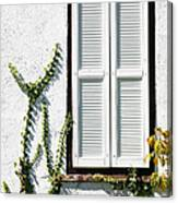 White Painted Shutter Canvas Print