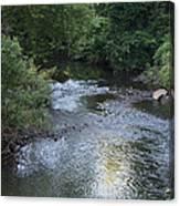 White Plains Stream Canvas Print
