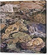 White Rock Canvas Print