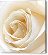 White Rose Heart Canvas Print