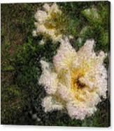 White Rose N My Backyard Canvas Print