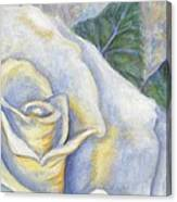 White Rose Two Panel Two Of Four Canvas Print
