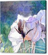 White Roses In The Shade Canvas Print