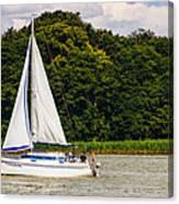 White Sailboat Canvas Print