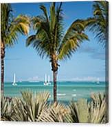 White Sails. Mauritius Canvas Print