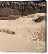 White Sand Below Canvas Print
