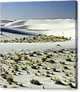 White Sands National Monument-098 Canvas Print
