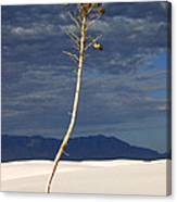 White Sands National Monument 2 White Sands New Mexico Canvas Print