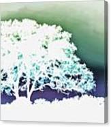 White Silhouette Of Oak Tree Against Blue And Green Watercolor Background Canvas Print