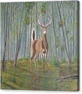 White-tailed Deer - Impressionistic Canvas Print