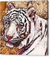 White Tiger Twist Canvas Print