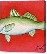 White Trout Canvas Print