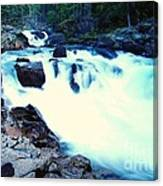 White Water On The Ohanapecosh River  Canvas Print