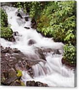 White Water Canvas Print