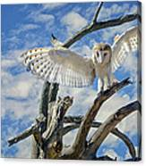 White Wide Wings Canvas Print