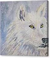 White Wolf Of The North Winds Canvas Print