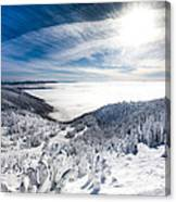 Whitefish Inversion Canvas Print