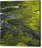 Whitehorse Falls Series 1 Canvas Print