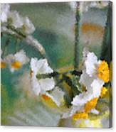 Whiteness In The Vase Canvas Print