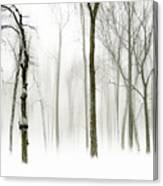 Whiter Shade Of Pale Canvas Print
