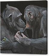 Who Gives A Fig? Canvas Print