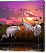 Whooping Cranes Tropical Florida Everglades Sunset Birds Landscape Scene Purple Pink Print Canvas Print