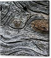 Whorls Of Wood Canvas Print