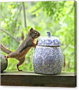 Who's Been In The Cookie Jar? Canvas Print
